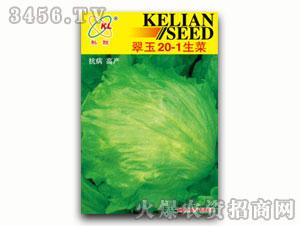 翠玉20-1生菜-莴苣种子