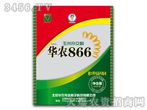 华农866最新国审玉米杂交种