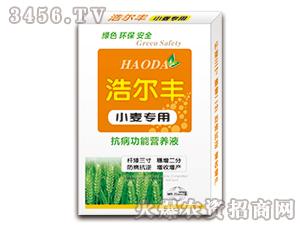 小麦专用抗病功能营养液-浩尔丰