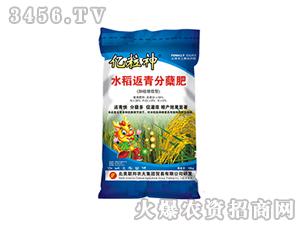 水稻返青分蘖肥-亿粒神