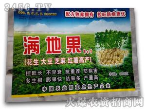 花生专用调节剂-满地果1+1-腾升泰达