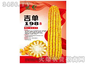 吉单198(玉米种子)-吉农