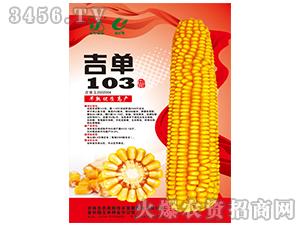 吉单103(玉米种子)-吉农