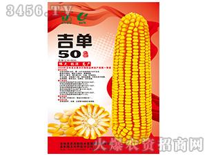 吉单50(玉米种子)-吉农