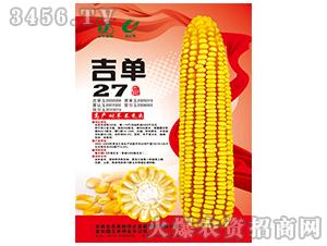 吉单27(玉米种子)-吉农