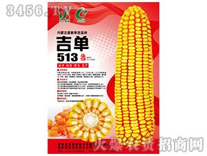 吉单513(玉米种子)-吉农