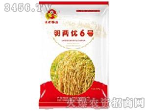 明两优6号(小麦种子)-皖农种业