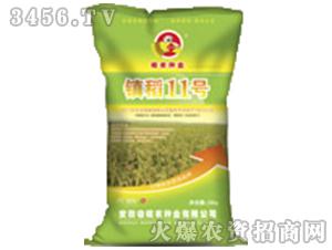 镇稻11号(小麦种子)-皖农种业