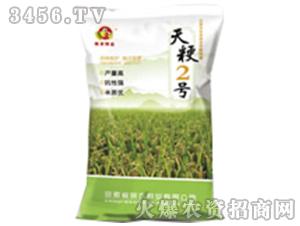 天粳2号(小麦种子)-皖农种业