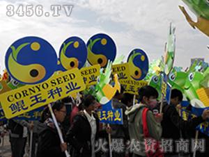 鲲玉种业展会宣传2