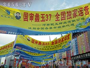 鲲玉种业展会宣传7