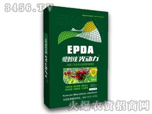 辣椒专用生态光碳营养调理剂-爱普达光动力-昆仑生物