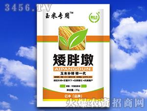 玉米专用叶面肥-矮胖墩-亿丰化工