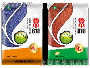 鲁单818-玉米种子-丰乐种业