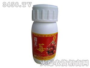 霸王莓50ml-德立泰