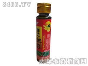 鲜花伴侣黄瓜专用10ml-德立泰