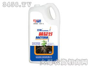 含腐植酸水溶肥料-菌益多-爱普生