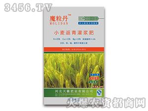 小麦返青灌浆肥-魔粒丹