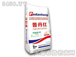 大量元素水溶性肥料20-20-20+TE-普丹红-农利
