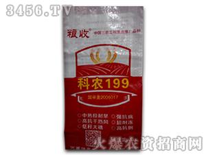 科农199小麦种子-坤元种业