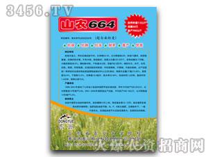 山农664-小麦种子-泰山种业