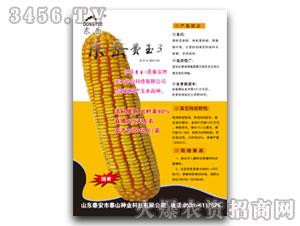 东岳费玉3-玉米种子-泰山种业
