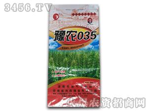 豫农035小麦种-坤元