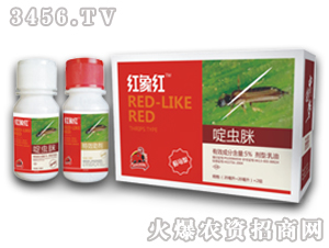 红象红(蓟马型)