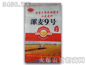 漯麦9号-小麦种子-华