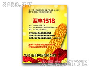 ��丰1518-玉米种子