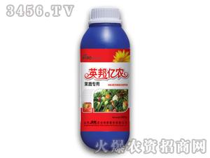 果蔬专用叶面肥-英邦农