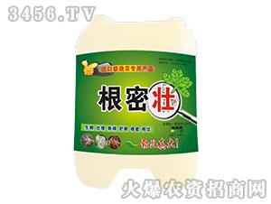 蔬菜专用植物生长调节剂-根密壮-标驰