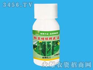 黄瓜专用调节剂-拉直增