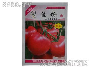 大果型番茄-番茄种子-大地种苗