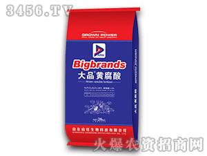 20kg大品黄腐酸-山
