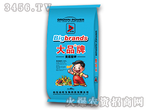 40kg黄腐酸钾-大品