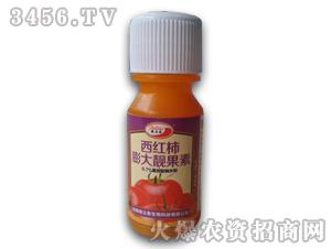 西红柿膨大靓果素20毫