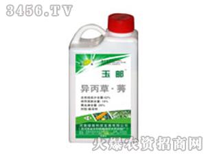 42%异丙草莠悬乳剂-玉邮-绿保