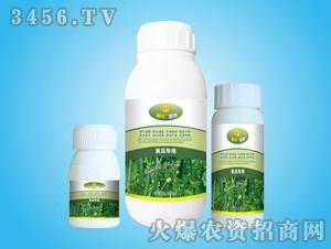 黄瓜专用叶面肥-春雨
