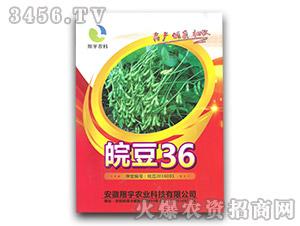 皖豆36-大豆种子-翔宇农科