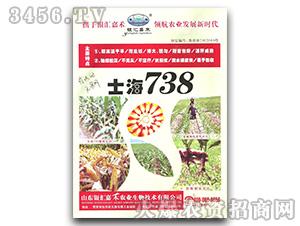 士海738-玉米种子-银汇嘉禾