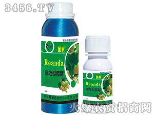 吡唑醚菌酯乳油-菌泰-利安达