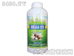 高纯微生物菌剂-菌益佰-瑞禾田