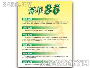 晋单68-玉米种子