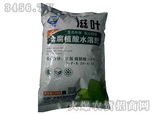 含腐植酸水溶肥26-4-11-滋叶-广宇通