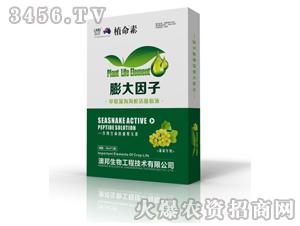 葡萄专用海蛇活肽原液-植命素-澳邦