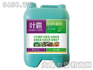 含氨基酸水溶肥-叶霸王