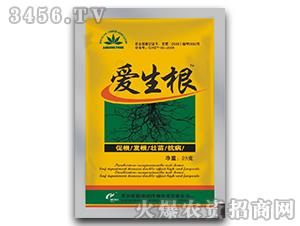 植物生长调节剂-爱生根
