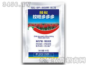 辣椒专用叶面肥-辣椒控