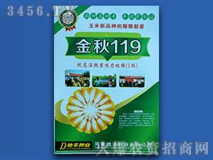 金秋119-玉米种子-地丰种业